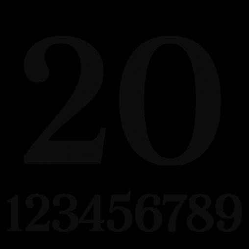 Huisnummer Zwart Plexiglas | 20cm